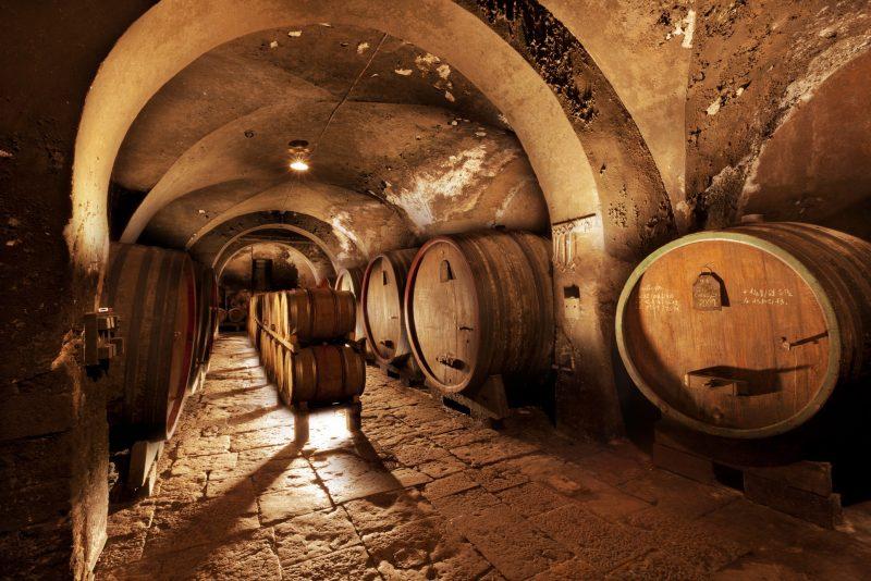dégustation vins jura