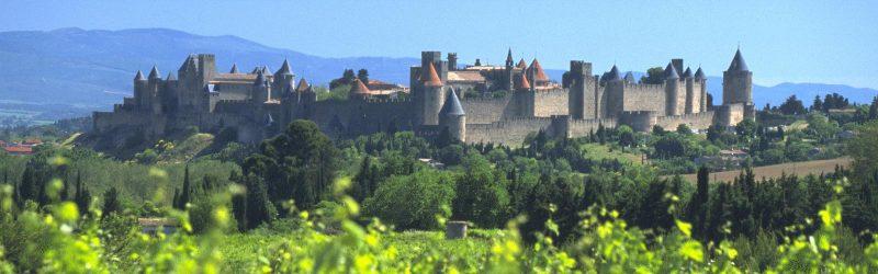 Soirée Saint Hubert au Bistrot La Cave avec Les Crus du Languedoc