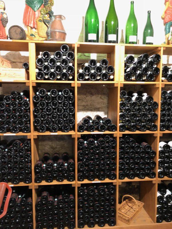 julien gros vin